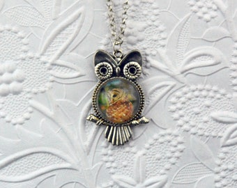 Owl within an Owl Silver Plated Pendant  Photo Jewelry Owl Necklace Owl Pendant Owl Photo Wildlife Photo Wildlife Jewelry Owl Lovers