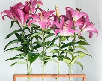 Test tube holder etsy for Test tube flower vase rack