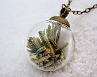 Bubble necklace / terrarium necklace / rosemary necklace / glass globe pendant / floral jewelry / remembrance gift / gifts for nature lovers