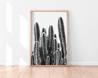 Black and White Cactus Wall Art, Cactus Print, Cactus Art, Desert Cactus Photo, Cactus South Western Decor, Cactus Photography, Minimalist
