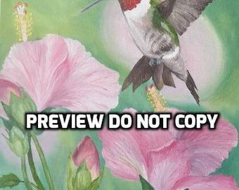Ruby Throated Hummingbird & Hybiscus
