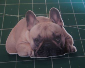 Frenchie dog puppy  Needleminder, Needlekeeper, Needle magnet, Magnet Minder