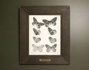 Vintage Grayscale Butterfly Archival Printable | Digital Download