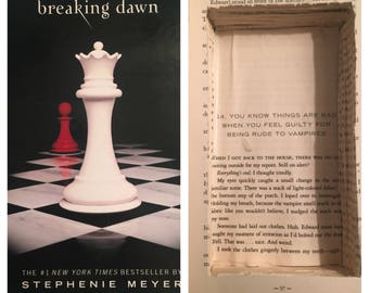 Twilight Breaking Dawn Secret Stash Book