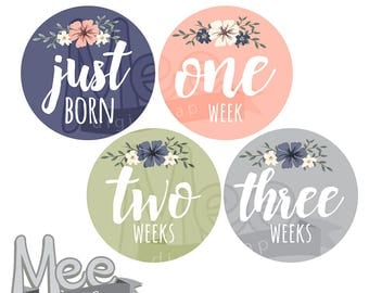 Floral baby mont stickers DIY monthly stickers baby girl milestone sticker onesie printable sticker summer flowers month planner sticker pdf