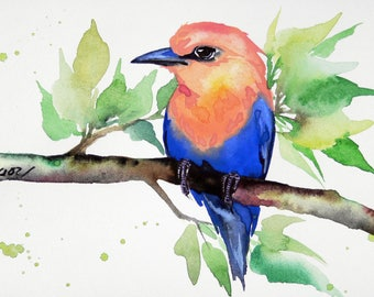 "4""x6""  original bird  Blue-bellied Roller watercolor painting signed not print  by Angor"