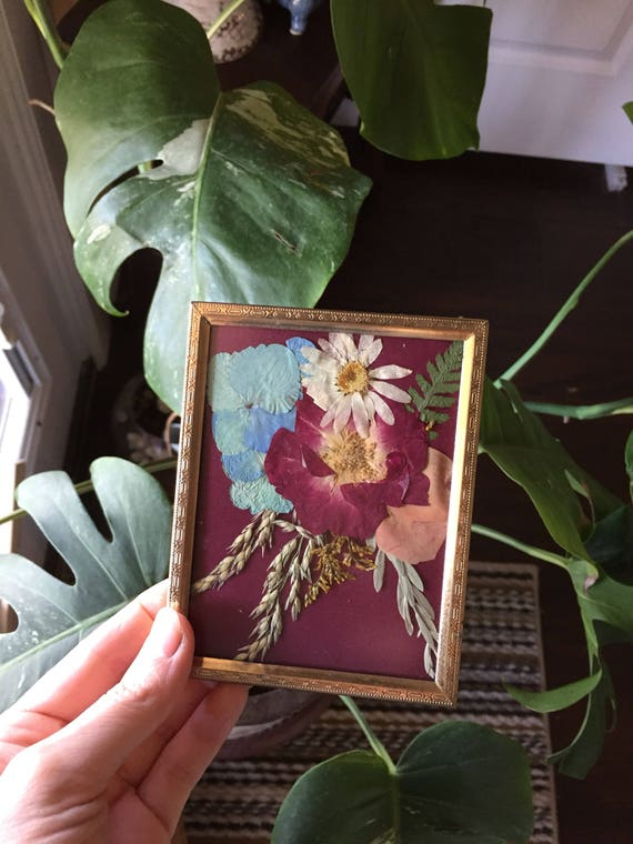 Real Bouquet Art- Blue Hydrangea, Rose, Daisy Botanical Art- Real Pressed Botany - Gold Vintage Framed Flower Art-  Small Hanging Flower Art