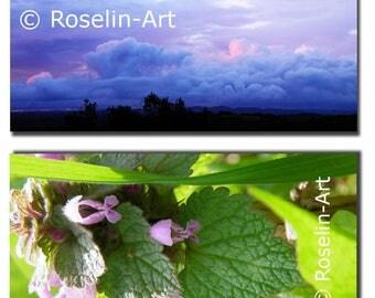 Lot 2 postcards, sky, storm, nettles