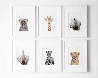 Set of 6 , safari nursery decor, Safari nursery prints, Safari  Nursery Printable, Safari  animals decor, Baby animals, Nursery art, Nursery