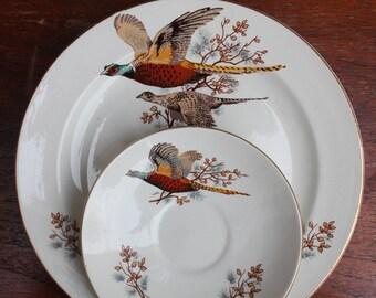 Vintage Pheasant Plate and Saucer Carrigaline Pottery Irish Ceramics
