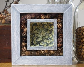 Shadow Box, Nature Decoration, Rustic Wall Decor, Queen Anne's Lace, Cabin Decor, Cottage Decor, Woodland Art, Wall Hanging,