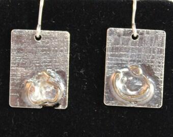 Unique Sterling Silver Earrings (100917-030)