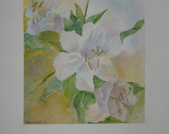 Lily, Lily, Lily  Water color by  artist Claire Cochrane