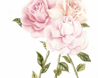 Watercolor Roses Print
