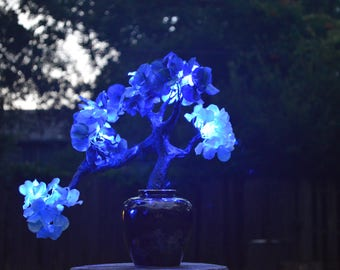 Semi Cascade Blue LED Bonsai Tree (FREE SHIPPING)