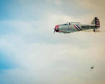 Aviation: Geico Skytyper 1, Vintage Air Show - Photography Print, Pictures, Wall Art