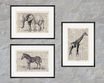 Prints set of 3 - SAFARI - antique book page - portrait and landscape