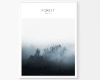 Forest wall prints, foggy forest, fog and forest, forest prints, indigo photography, nordic nature, forest landscape print, landscape photo