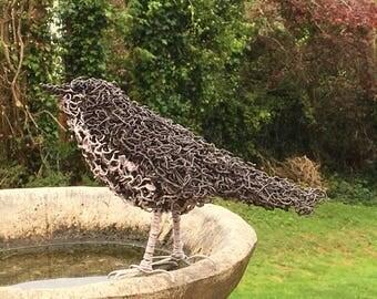 Thrush wire sculpture. Wire art. Thrush. Bird sculpture. Garden art. Garden decor. Garden ornament. Garden decoration. Outdoor. Wire bird