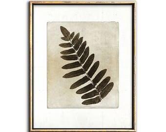 Sepia Botanical, Farmhouse Wall Decor, Leaves Print, Printable Wall Art, Photo Collage, Botanical Art, Neutral, Wall Decor, Art Prints, Art