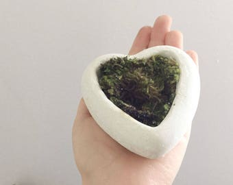Heart-shaped Planter / Concrete Planter / Wedding Favor / Gift /Succulent Planter