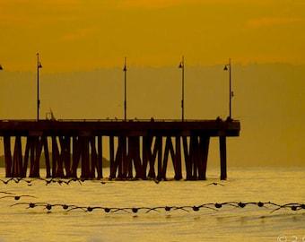 Venice Morning Commute, panoramic, sunrise, pier, venice beach, wildlife photography, pelicans, birds, wall art