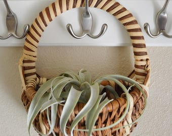 Dark Brown/Tan Hanging Basket - Vintage