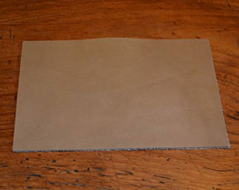Coupon of leather vegetable Tan cowhide (8934945)