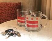 13 oz Washington DC Pride Glass Coffee Mugs