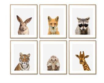 Animal Print, Baby Animal Prints, Animal Prints, Nursery Animal Print, Nursery Prints, Woodland Animals, Animal Nursery, Prints For Nursery