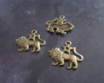 a sign of Zodiac lion metal bronze charm 20 x 20 mm