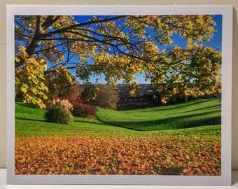"""10""""x8"""" Autumn View, East Sussex Photographic Print"""