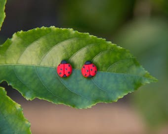 Lady Beetle Stud Earrings - Handmade Polymer Clay
