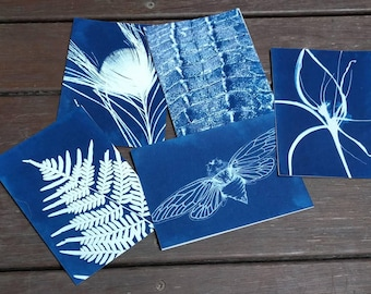 Pack of 5 Cyanotype Greeting Cards, blank cards