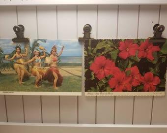 Set of 2 vintage Hawaiian postcards