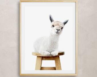 Alpaca Digital Print, Nursery Decor, Nursery Wall Art, Instant Download, Printable Poster, Instant Digital Download, Printable Wall Art