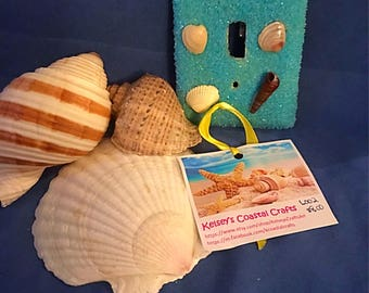 Sea Shell Light Switch Plate Cover