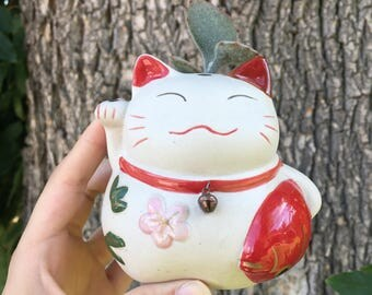 Cute Asian Cat Pot with Succulent