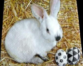 White Rabbit and egg napkin