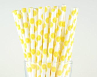 Lemon Fruit Paper Straws - Mason Jar Straws - Party Decor Supply - Cake Pop Sticks - Party Favor