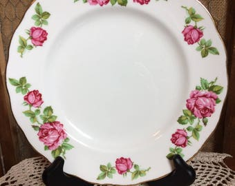 Colclough China Salad Plate