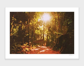 Forest Path Print, New Zealand Art, Travel Poster, Retro, Wall Art, NZHolidayArt