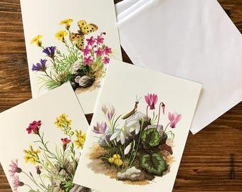 Set of three Vintage Botanical Notecards