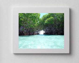 Picture of La Parguera, Puerto Rico, Modern Photography, Nature, Minimalist, Wall Print