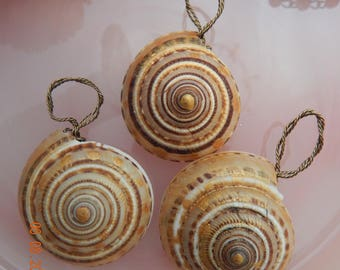 Beautiful Hand Painted Snail Shell Pendant