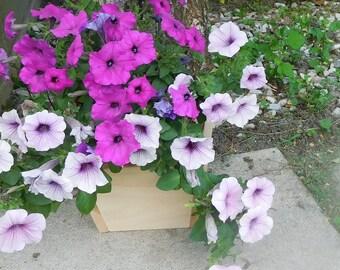Cedar Planter , Planter Box , Flower Planter , Outdoor Planter , Herb Planter