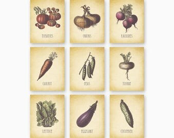 FARMHOUSE KITCHEN Art, Kitchen Printables, Farmhouse Decor, Rustic Kitchen, Vegetable Wall Art, Set of 9, Diy Kitchen Art, Instant Download