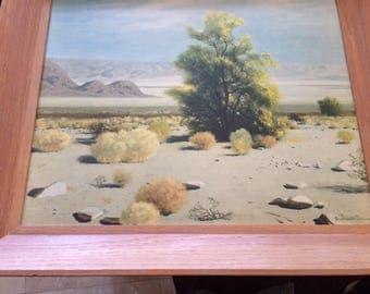 PAINTING: By James Swinnerton - Desert Study