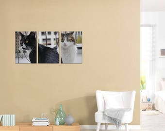 Cat Duo - Thee panel set on canvas