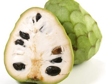 20pcs Cherimoya seeds  Custard Apple  Graviola Guanabana Annona muricata Seeds Tropical Fruits  Custard Apple